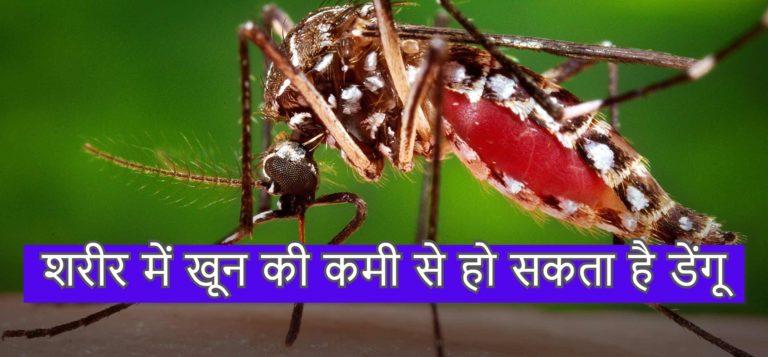 शरीर में खून की कमी से हो सकता है डेंगू
