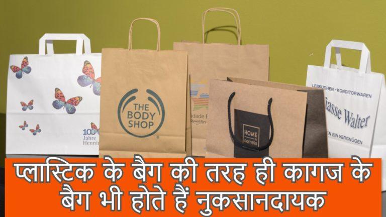 प्लास्टिक के बैग की तरह ही कागज के बैग भी होते हैं नुकसानदायक