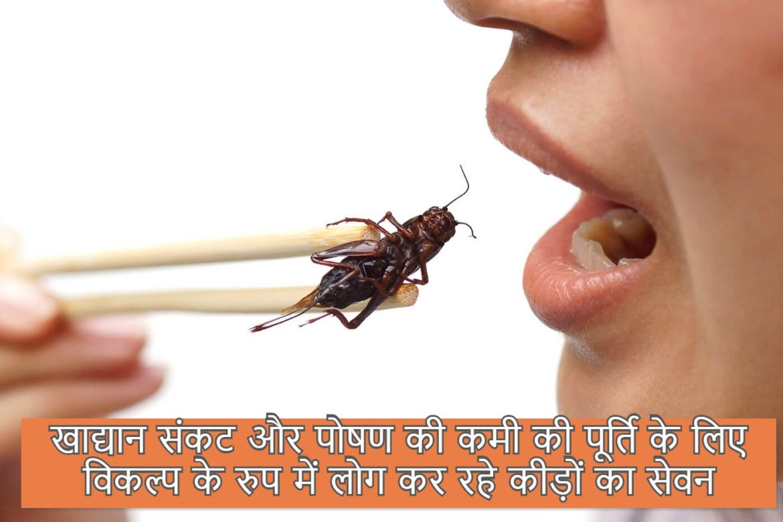 खाद्यान संकट और पोषण की कमी की पूर्ति के लिए विकल्प के रुप में लोग कर रहे कीड़ों का सेवन