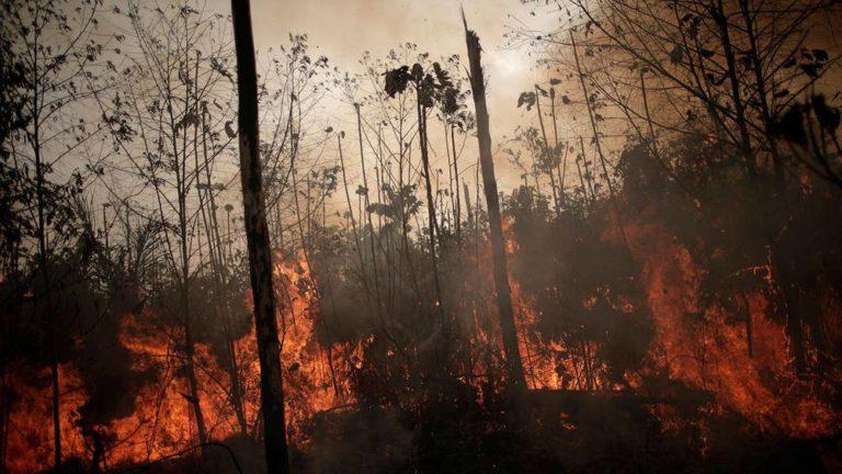 ऑस्ट्रेलिया के जंगलों में भीषण आग : सतर्कता बरतने की चेतावनी दी गई
