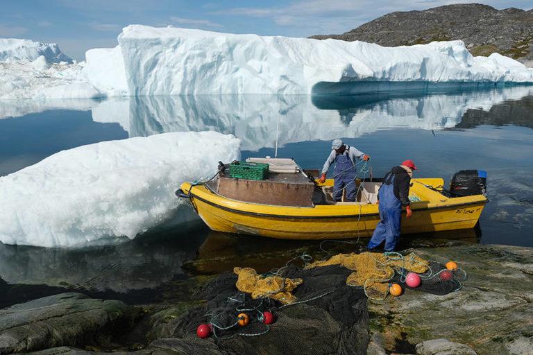 बढ़ते तापमान के कारण  आइसलैंड से दूर जा रही मछलियाँ