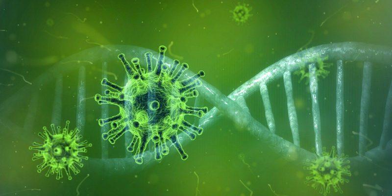 डब्ल्यूएचओ की रिपोर्ट का दावा 80 फीसदी जनसंख्या होगी कोरोना वायरस की शिकार !