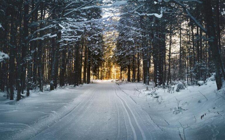 आइए जानते हैं मौसम विभाग के अनुसार क्यों पड़ेगी इस साल कड़ाके की ठंड