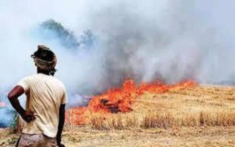 पराली के लिए किसानों को कसूरवार ठहराना कहाँ तक सही है ?