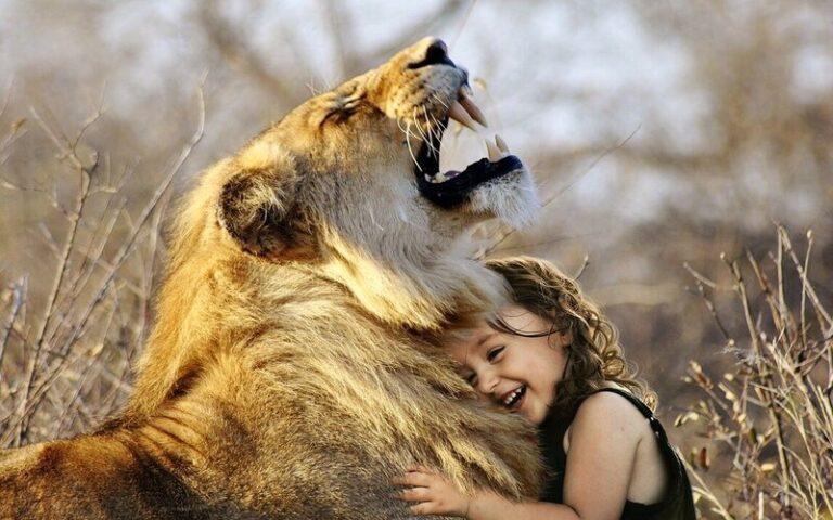 क्या जानवर भी जीत और हार जैसी भावनाओं को महसूस करते हैं?