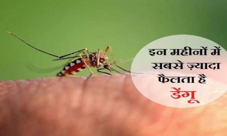 डेंगू रोकथाम दिवस: डेंगू से बचाव के लिए अपनाएं ये आसान उपाय